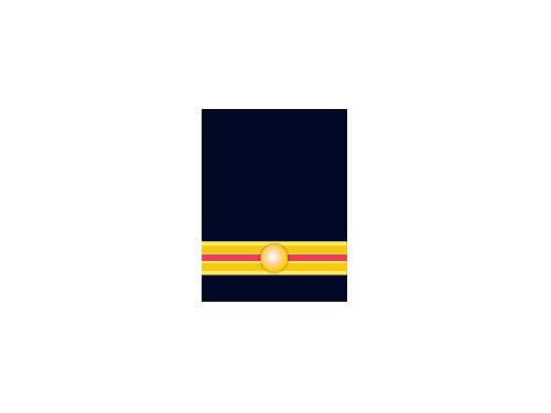 Brandmeester